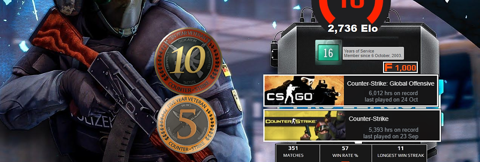 🌪️ 03' Faceit Level 10 | 5 & 10 Years Vet. Coins | 11,405 Hours | Instant Dl.