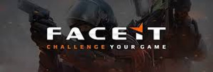copy of FaceIT Nickname '***' | For Main/Smurf | Instant Delivery