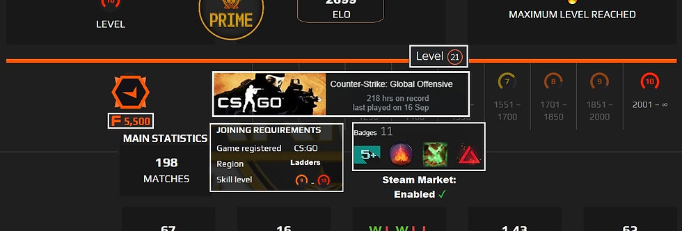 ⚡Faceit 2,699 Elo | 1.43 KD | Prime & Market Enabled | 198 Matches | Instant Dl.
