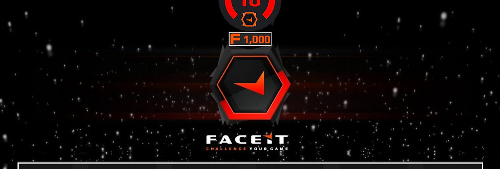 Faceit Level 10 | 1.62 K/D | 1,000 Points | Verified | Instant Delivery