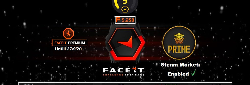 Faceit Premium Level 5 +5 Wins | 234 Matches | 5,250 Pts  | Prime | Instant Dl.