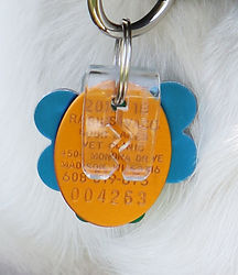 Pet tag silencer, dog tag clip, dog tag silencer, silentags, rangle the jangle