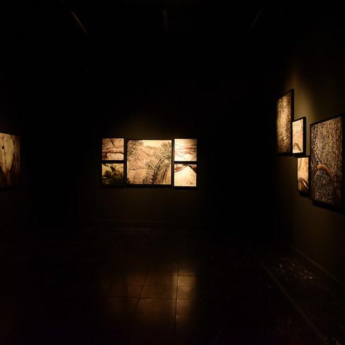 Exposição Calçadas, Pedras e Pusações. Vera Carlotto