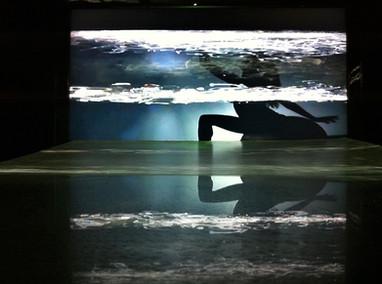Reflexos Mutantes. Instalação. Cláudia de Bem. Galeria Virtual do WSD 2013. Foto (Thaís Petzhold): Cláudia de Bem.