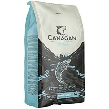 Canagan Grain Free Scottish Salmon Dog Food 2kg