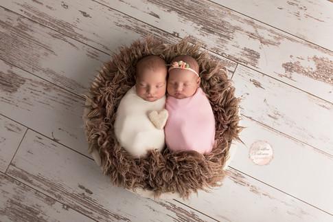 Photographe en Sarthe 72 - séance photo naissance gemellaire en studio