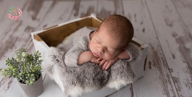 Séance nouveau né à la ferté bernard en Sarthe 72
