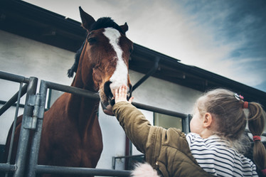 Fotograf für Kindergeburtstag in München, Reportage Kinder auf Pferden und Ponys