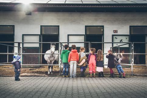 Kindergeburtstag Fotoreportage