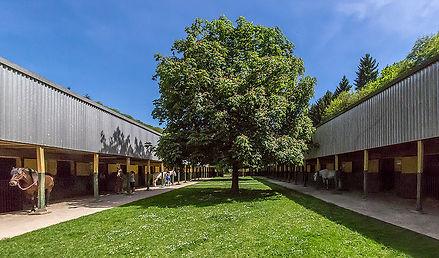 Centaure - Académie Equestre Luxembourgeoise : Le Centre Equestre