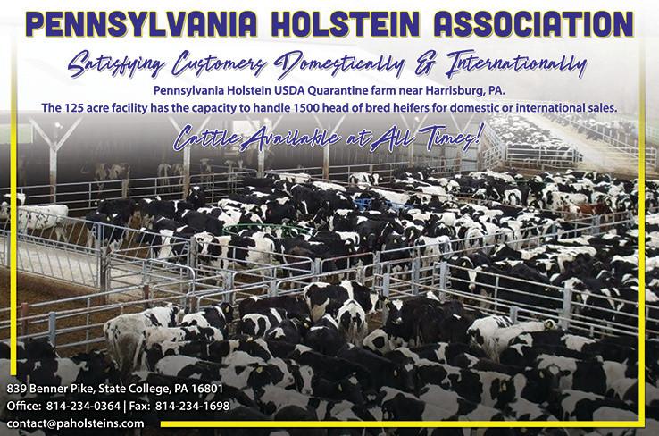 PA Holstein Exp June18.jpg