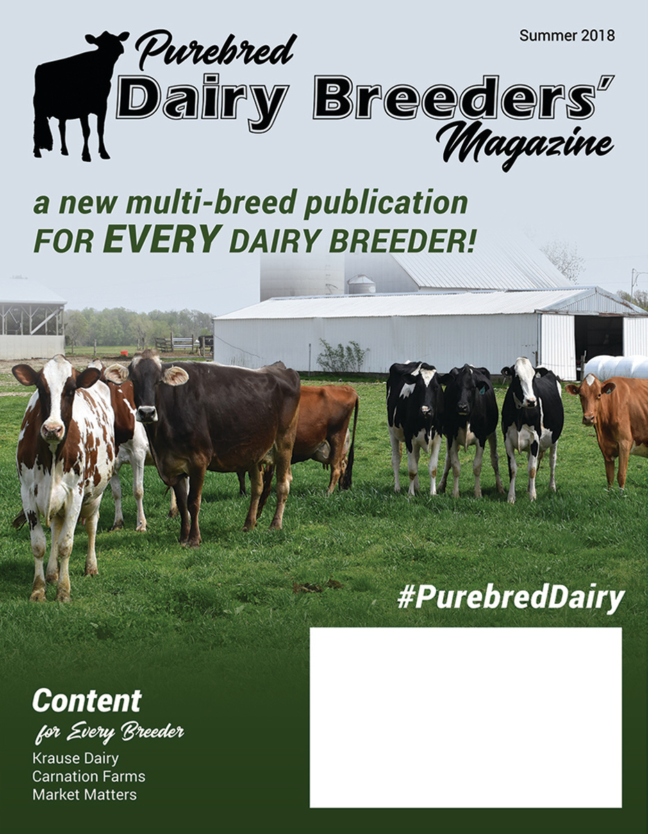 DBM Cover June18