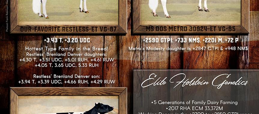 Terra Linda Summer Ad 6.18.jpg