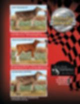 Ricky Bobby Farm_FP 021018a.jpg