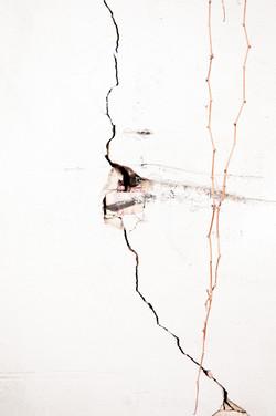 Urban Cracks 6