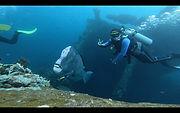 Kursus Diving1.jpeg