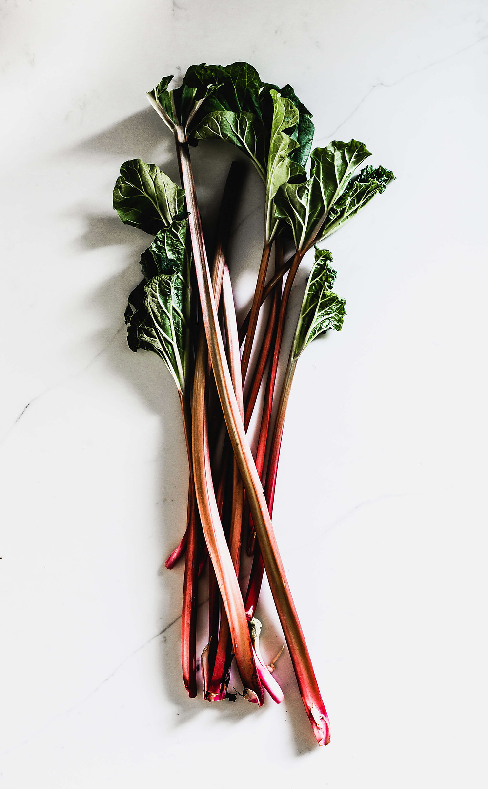 local CSA, fresh veggies