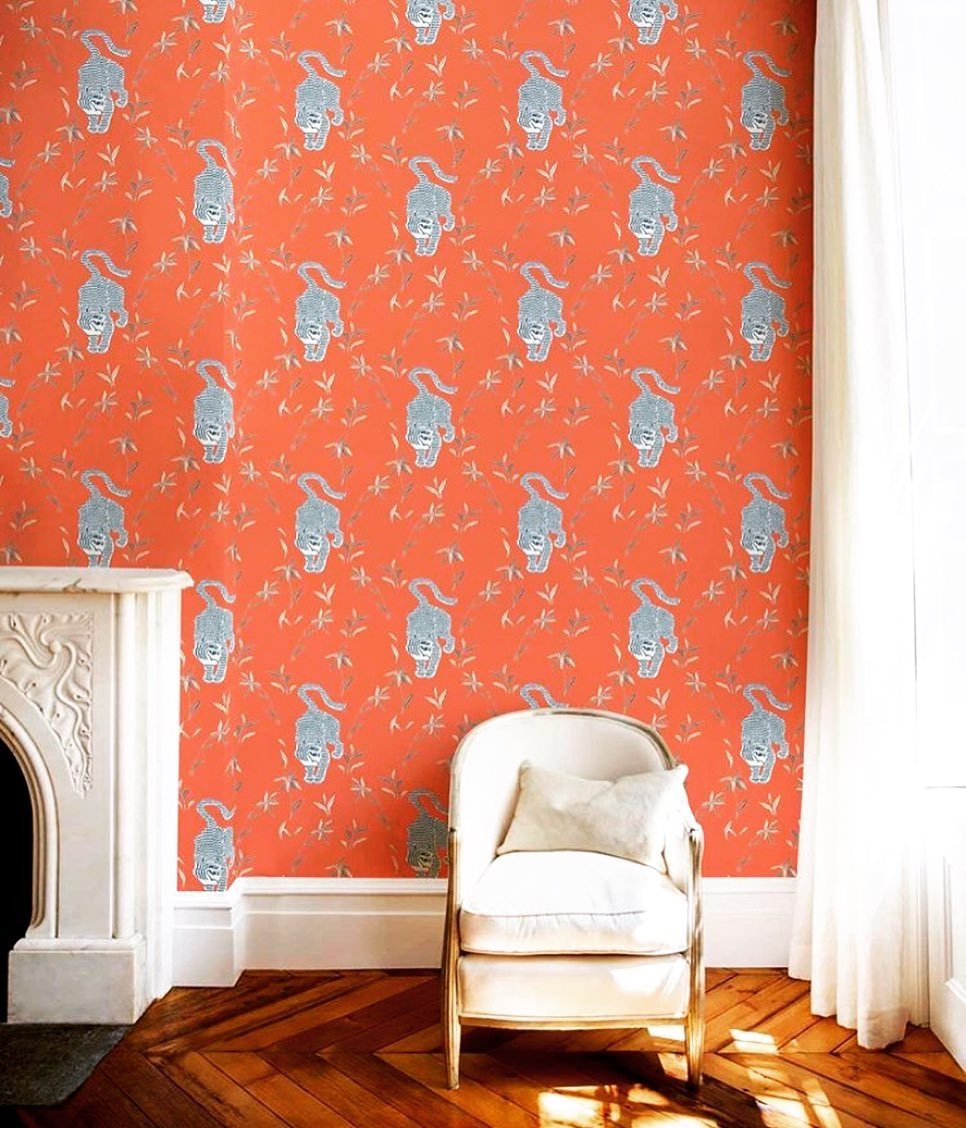 Bold tiger Mitchell Black wallpaper in contemporary Parisian style room
