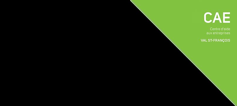 Logo CAE