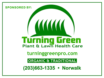 Turning Green (1).png