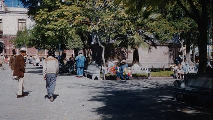 Jardín Zenea, 1953