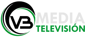 LOGO vb media television.png