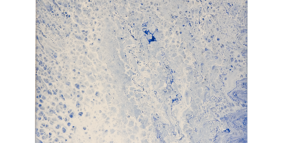 Tablou albastru, alb pictat pe panza