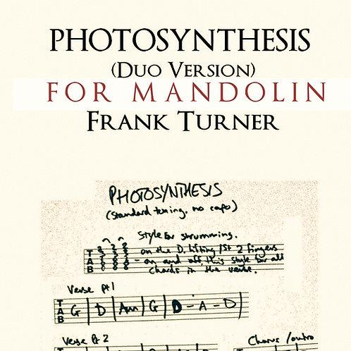 Frank Turner - Photosynthesis (Duo Version - Mandolin)