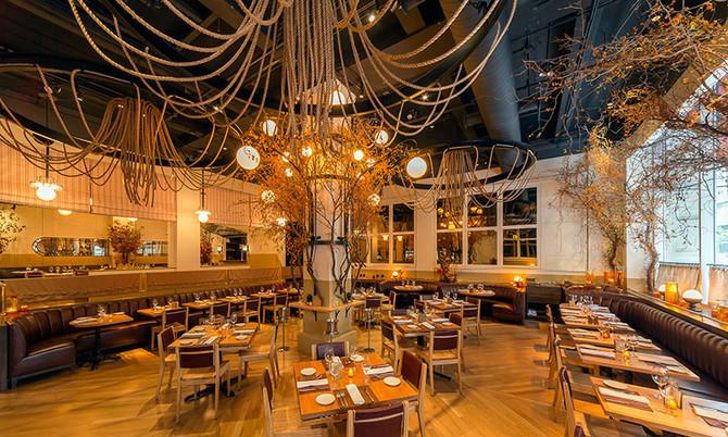 10 Principios Básicos para el Diseño de un Restaurante