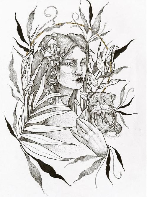 Empress Tamarind A4