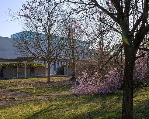 le parc du musée Würth à Erstein