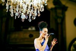 stilvolle Loungemusik - Ariane Roth