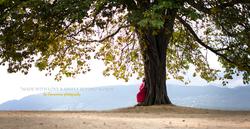 Femme enceinte dos sur arbre au parc