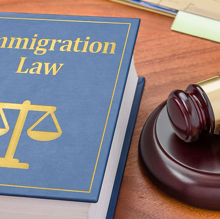 Legal representation in Immigration Cour
