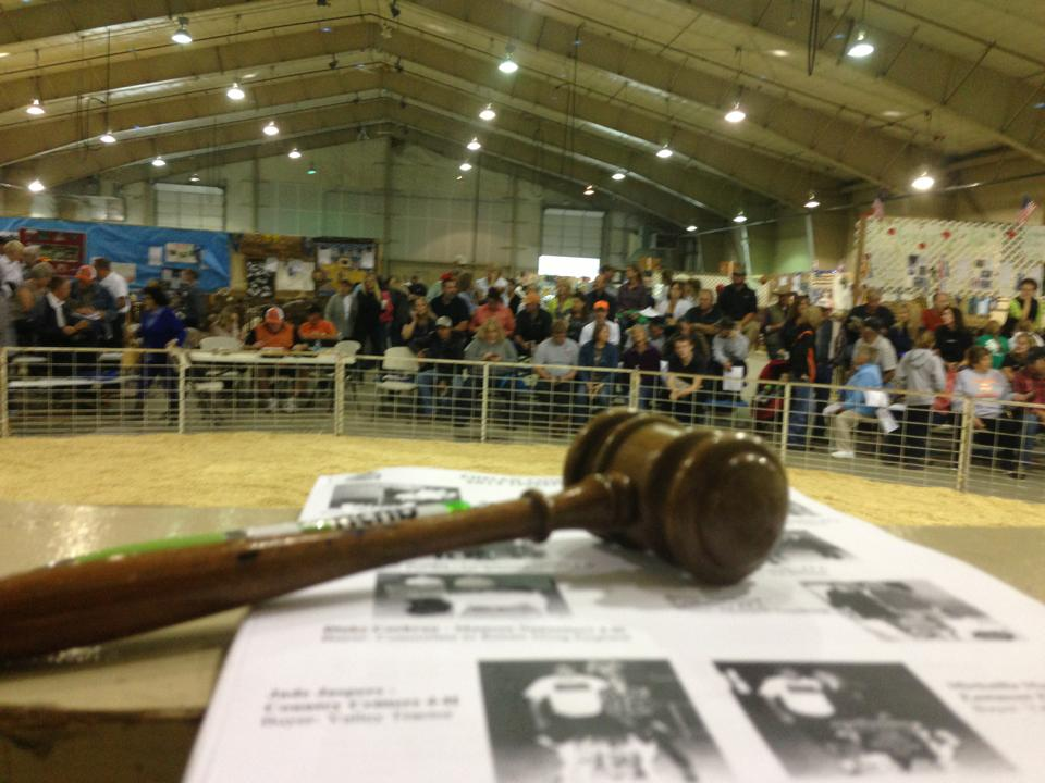 Chelan County Fair Auction