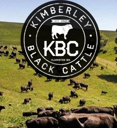 Kimberley Black Cattle.png