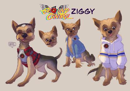 Ziggy in color