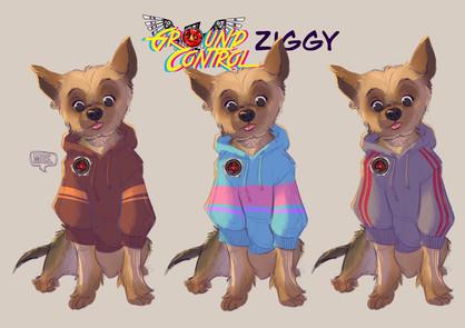Ziggy hoodie test