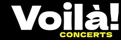 Voila Logo - Colour.png