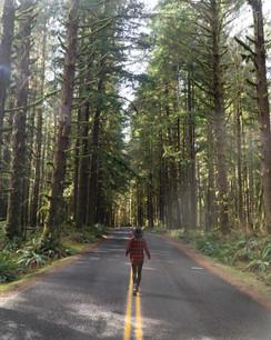 Hoh Rainforest Road
