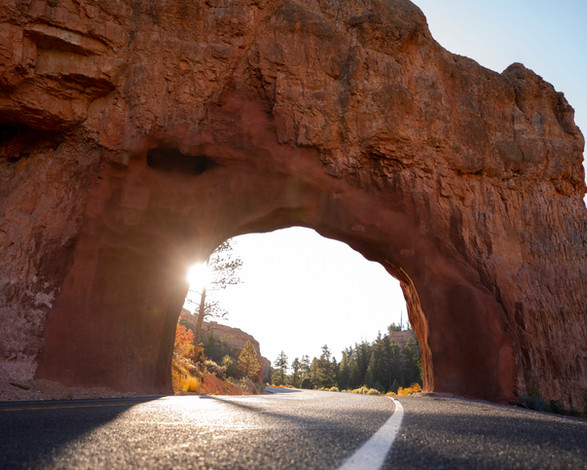 Bryce Canyon Arch