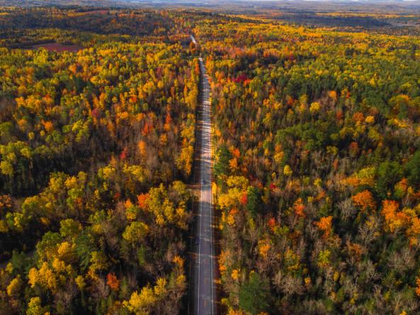 Drone road-0369.jpg