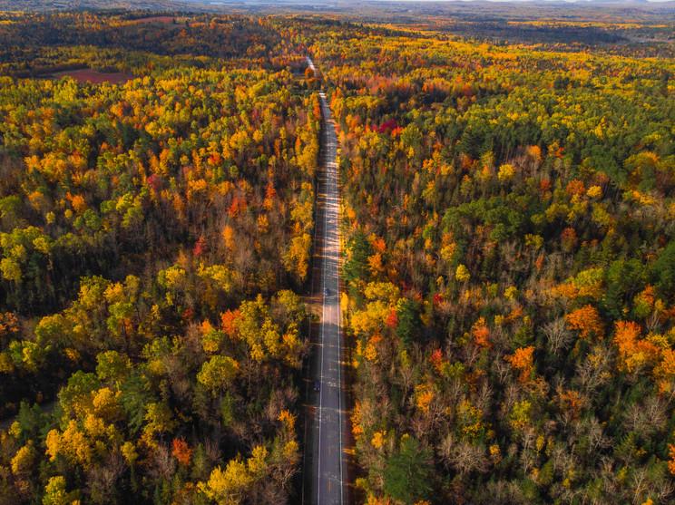 Aerial Fall Backroads