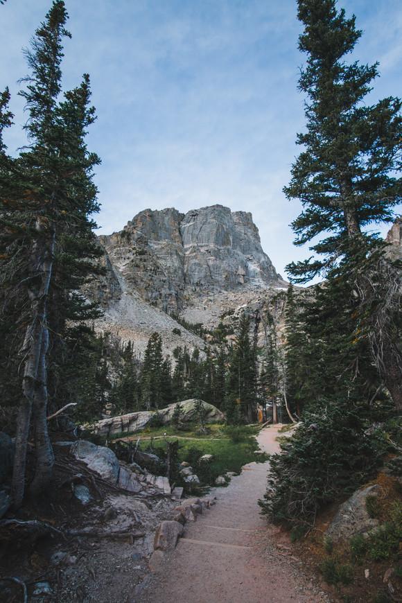 Colorado Split Trees mountain.jpg