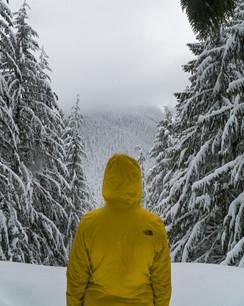 PNW Winter Mountains