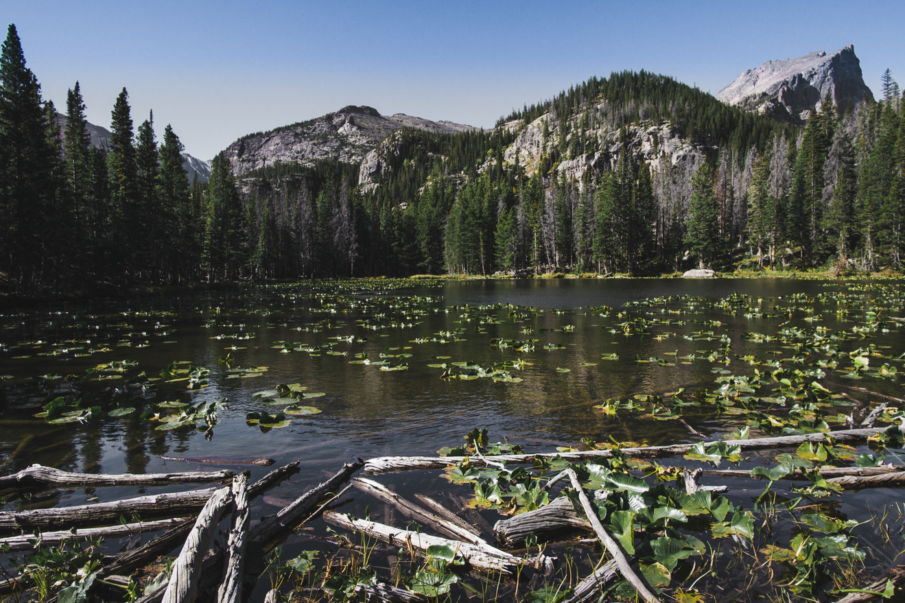 Emerald Trail Lake