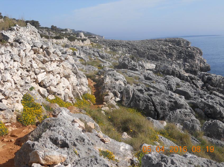 sentiero cipolliane3
