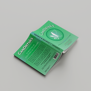 Livre CanDrinks couverture et 4e FR - bo