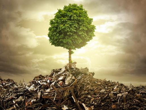 Unleashing Human Adaptability During Crisis