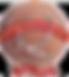bronzeaward_transparent.png
